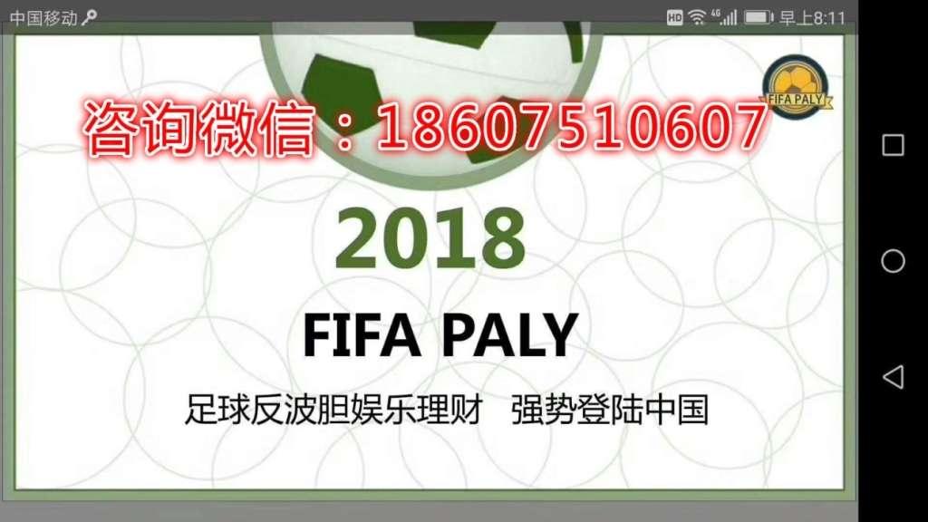 FIFA PALY 足球反波胆怎么做,需要投资多少钱